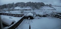 I think we got snow! (barronr) Tags: road trees winter autostitch snow garden scotland shed swing iphone westlothian bathgate