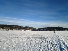 Saltwater Ice Fishing in Norway's Fjords #10