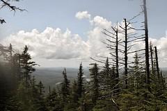 Man I miss the mountains (sabrinagranger1) Tags: adirondacks landscape warmtones warm hikes hike nature mountain mountains