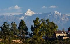 A hut before hill. (draskd) Tags: chaukori uttarakhand india asia mtnandakot dangthal kumaontravel travelphotography mountain mountainrange ridge hut lodge landscape mountainscape himalaya himalayas himalayanvista hillstation nikon draskd 80thexplore3717