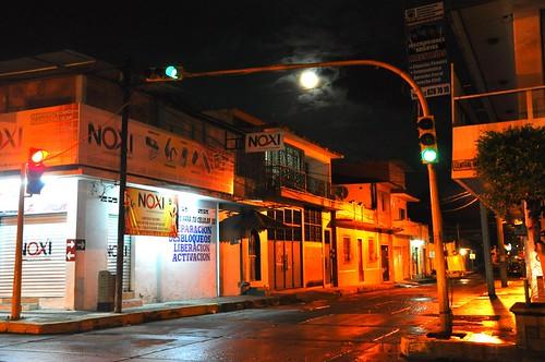 Nocturna (6)
