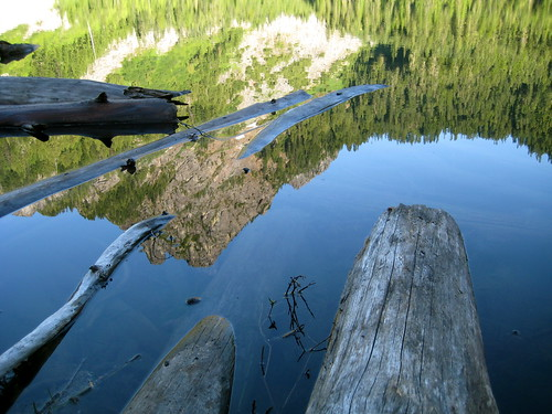 Reflection and Driftwood in Eagle Lake
