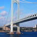 Verrazano-Narrows Bridge_6