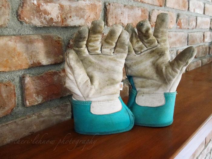 IMG_3415_gloves.jpg