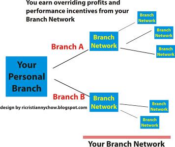 Branch Get Branch