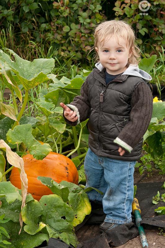 My little Pumkin with the pumpkin: 248/365