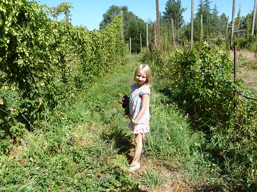 Alice outstanding in her field ... hop field, that is.