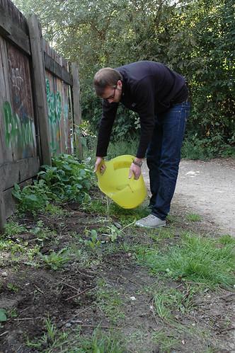 Jedes Pflänzchen benötigt eigentlich 10 Liter Wasser beim Anpflanzen.