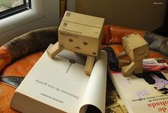 Lunes Lluvioso (Oly_ [Sin tiempo]) Tags: toy book lluvia amazon leer libro read explore juguete lectura kaiyodo lluvioso yotsuba danbo nikond60 danbooru memoriasdeunageisha danboard ellibrodelaalmohada