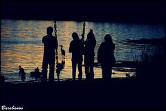 Deer Lake Park (Miss Barabanov) Tags: parque trees sunset pordosol summer people lake canada heron nature water animals gua buildings lago photo duck pessoas nikon foto bc britishcolumbia natureza silhouettes goose burnaby vero metrotown gara prdios canad rvores patos silhuetas deerlakepark d80