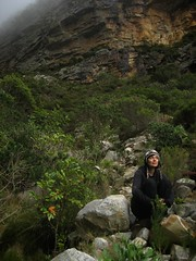 The Pipe Track: Kiki at the foot of Slangollie Ravine (mallix) Tags: old trees winter mist cold rain weather rock misty century southafrica outdoors dangerous bush iron hiking weekend pipes pipe capetown brush hike fresh historic climbing scree ravine lordoftherings hikers kiki waterworks scramble assent woodheadtunnel slangollieravine thepipetrack