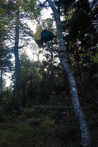 Cape Chignecto (5)