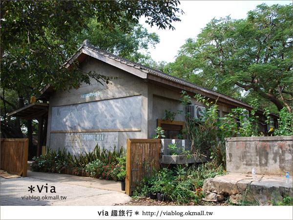 【彰化】彰化藝術高中~教室與森林結合的美麗校區4