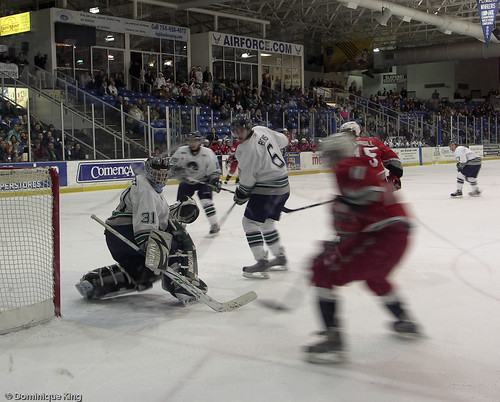 Plymouth Whalers 7