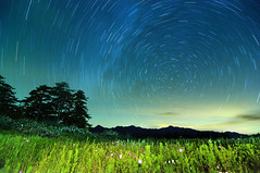 (Explored) () Tags: night taiwan   startrails    d90