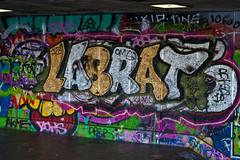 Labrat (garryknight) Tags: 40d 50mmf18 canon creativecommons london southbank graffiti labrat lightroom skateboardpark