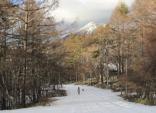 別荘地と蓼科山 2009年12月16日15:29 by Poran111