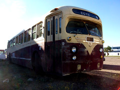 "GM ""Old Look"" Bus (dave_7) Tags: old bus vintage rust gm purple rusty twotone oldlook lethridge atomicengery tgh3101"