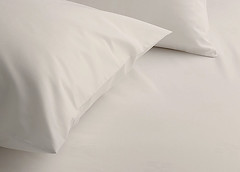 Egyptian Cotton Sheet - Latte