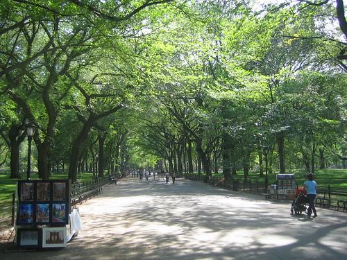 Central Park _ 7295