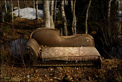 Chaise Longue (Tjook) Tags: favorite brown art abandoned by design photo chair woods foto furniture decay kunst favorites bank dirty best sofa exhibitions experience editorial qoop sales bilder freud favorited photodesign artphoto photosight photoexperience tjook fotovotr tjookcom