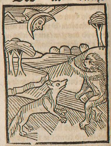 0305 De vulpe et simia