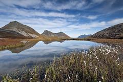 Trmvik Pond Reflections | Norway (Reed Ingram Weir) Tags: trip blue autumn mountains water norway reflections pond colours cloudysky rekvik reedingramweir riwp trmvik
