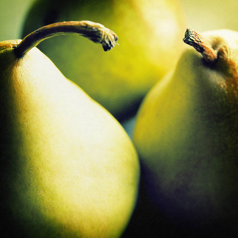 three pears in morning light