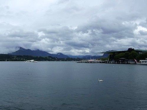 view of Lake Lucerne in Switzerland with alps in background