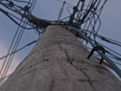 Electricity (cassidy chambers photography) Tags: yeah telephone boo wires electricity poles
