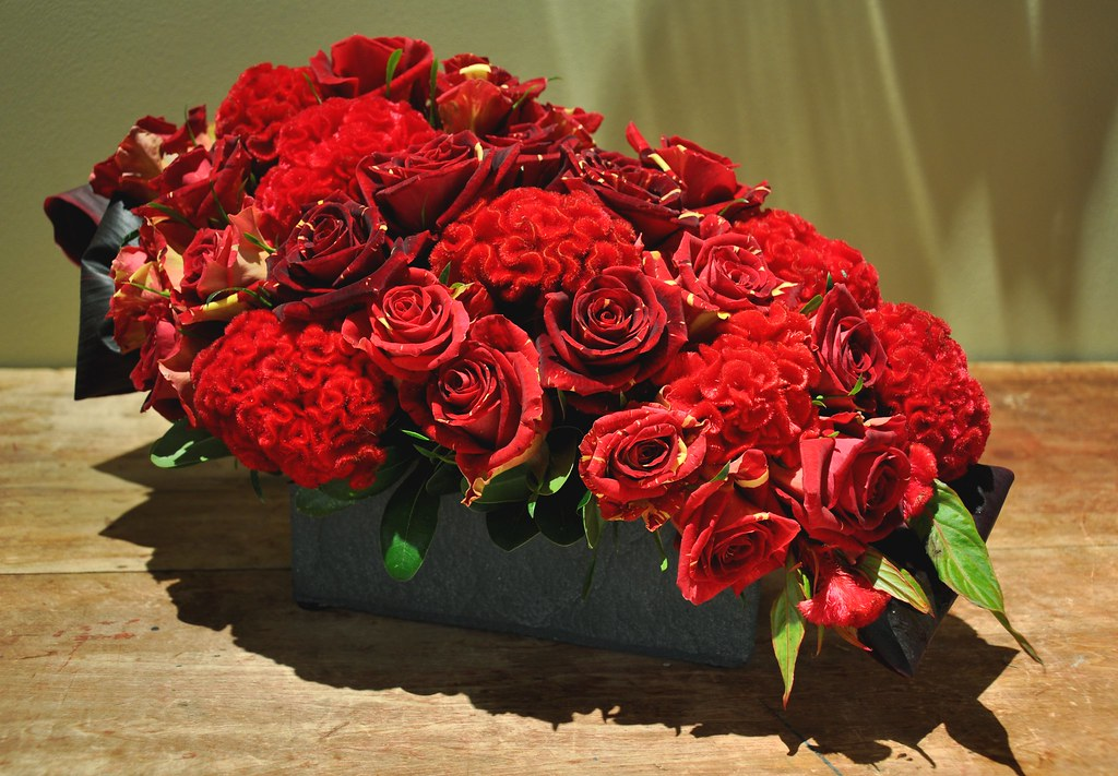 Celosia and Roses