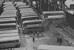 Ex London buses being shipped to Ceylon (now Sri Lanka) at a London dock in the 1950's. (Ledlon89) Tags: bus london transport srilanka ceylon lt shipped londonbus londondocks aecregent leylandtiger rtbus alltypesoftransport tdbus