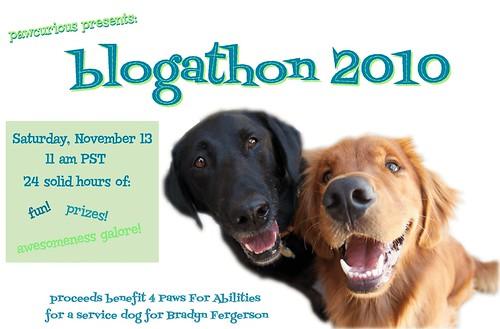 blogathon 2010