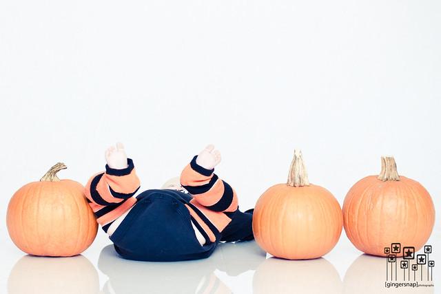 reese pumpkins1