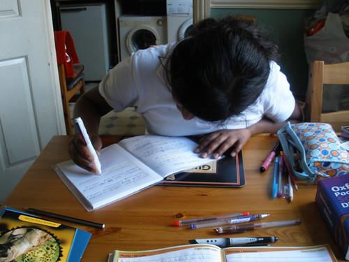 Homework session