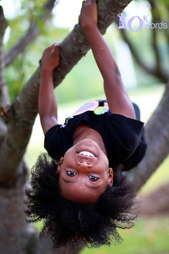 10.3 (tree climber)