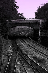 Which Way? (Ozlem Kaya) Tags: pink bw white black train canon turkey way eos trkiye rail istanbul 550d