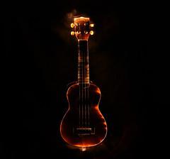 My Ukulele is on fire (time sponge) Tags: light music orange night ukulele torch strings
