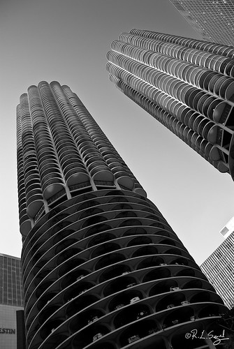 Marina City Seen From the River