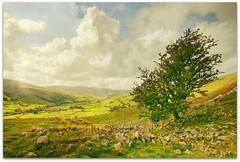Uphill Downdale (~ paddypix ~) Tags: lepetitprince mywinners abigfave flickrdiamond theunforgettablepictures lesamisdupetitprince imagesforthelittleprince