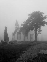 Mt. Carmel Lutheran Church (Gothic) 7 (Universal Pops (David)) Tags: morning autumn trees bw fall cemetery fog mood pennsylvania atmosphere nb steeple spire lutheran lonelytree dense somersetcounty gothicrevival hurch citrit vanagram
