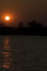 sunset on the Zambezi (bdinphoenix) Tags: africa sunset nature water river nikon d2x zimbabwe barrywilliamsphotography