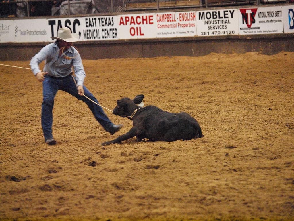 Pasadena Texas Professional Rodeo Cowboys Association PRCA Pasadena Livestock Show and Rodeo October 5 2010 Bareback riding Steer wrestling Saddle bronc Tie down roping Barrel racing Horses Bull Ridin