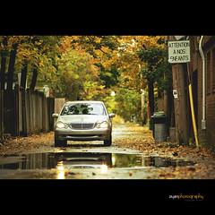 The Sound of Autumn (Explored) (Ziyan | Photography) Tags: autumn red orange reflection fall car yellow canon benz drive canon5d    ziyan  canonef70200mmf28lisiiusm