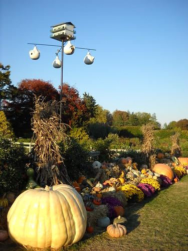 Longwood October 2010 112