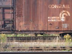 Crisp (Crispo) 1993 (paperlampshade) Tags: bench graffiti graff freight cnrail 10172010