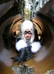 Creeping Kitty (Roxanna Meta) Tags: comics costume comic cosplay marvel animedestiny xcelsior blackcattallestsilver