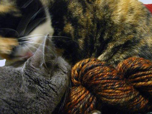 I made Ellie yarn