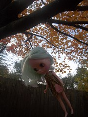 The oh so amazing art of hanging dolls from trees