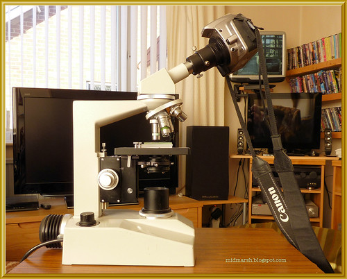 Microscope and Camera